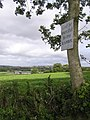 Message on a tree - geograph.org.uk - 1478621.jpg