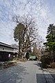 Miyagawa, Chino, Nagano Prefecture 391-0013, Japan - panoramio (11).jpg