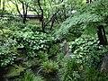 Momijiyama Garden in Sumpu Castle Park 11.JPG