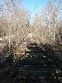 Monroe County - Victor Pike - abandoned railway - tracks - P1120768.JPG