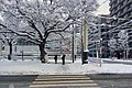 Morning of snow in sapporo - panoramio.jpg
