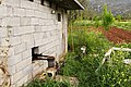 Motorized-Irrigation Argon-Pedion Arcadia Peloponnese.jpg