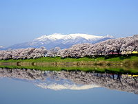 Mount Zaō and Sakura 01.jpg