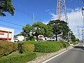 Mutsunahigashi-Ryokudo-2.jpg