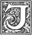 Muusmann-Matadora-J.png