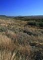 NRCSMT01040 - Montana (4929)(NRCS Photo Gallery).jpg