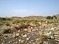 Navidhand new 408 - panoramio.jpg
