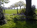 Near East Hoe Manor, Hambledon - geograph.org.uk - 437553.jpg