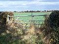 Near Osbaston - geograph.org.uk - 601491.jpg