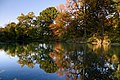 New York Botanical Garden October 2016 013.jpg