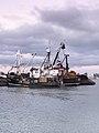 New Zealand Fishing (6889770095).jpg