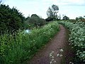Nottingham Canal towpath - geograph.org.uk - 177092.jpg