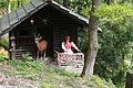 Odenthal Altenberg - Märchenwald 53 ies.jpg