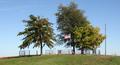 Old Harvey Farm Cemetery.png