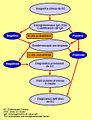 Organigrama diagnóstico EC.3.jpg