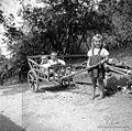 Otroci na kulah, Vino 1948.jpg