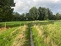 Oude Roode Haan, Groningen, Dal van de Hunze, Euvelgunne, Stainkoelen 22 30 00 400000.jpeg