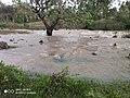 Overflowing river.jpg