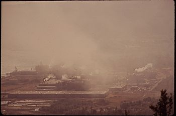 PULP MILL AIR POLLUTION - NARA - 544999