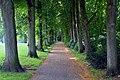 Pad Goffertpark Nijmegen.jpg