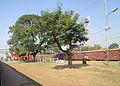 Paharpur railway station.JPG