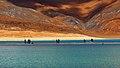 Pangong Tso India.jpg