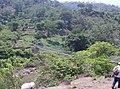 Panorama del puente Hamaca. - panoramio.jpg