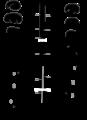 Parasite180130-Figure 6 - spermatozoa of Bucephalidae.png
