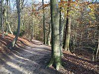 Parc Brugmann4.jpg