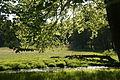 Park w Gołuchowie z XIXw.JPG