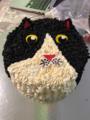 Pastel con cara de gato.png