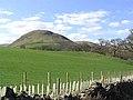 Pasture near Knockelly - geograph.org.uk - 404461.jpg