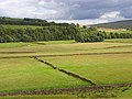 Pastures, Alston - geograph.org.uk - 902056.jpg