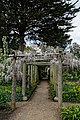 Pergola at Myddelton House garden, Enfield, London.jpg
