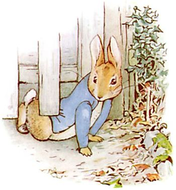 PeterRabbit7.jpg