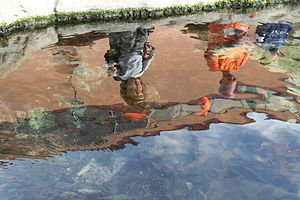 Photo of two people reflected in a fish pond.JPG
