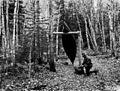 Photograph of Canoe Rest on Smoke Lake Portage - NARA - 2128454.jpg