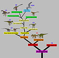 Phylogenetic tree of Theropods respiratory system 01.JPG
