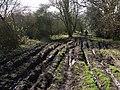 Pidham Lane - geograph.org.uk - 717660.jpg