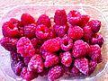 PikiWiki Israel 28891 Redberries.jpg