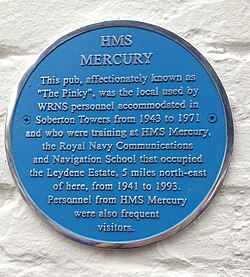 Pinky plaque