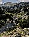 Pirin-2014-BanderishkiChukar03.jpg