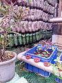 Plant Wall Aquaponics IMG 20150805 172858.jpg