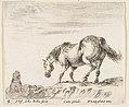 Plate 4- a horse in profile facing the left, about to descend from a mound, a horseman to left in background, from 'Diversi capricci' MET DP817354.jpg