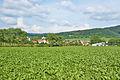 Pohled na obec od západu, Knínice u Boskovic, okres Blansko.jpg