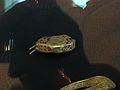 Pommel Cap (and hilt plate).jpg