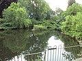 Pond, Grosvenor Park, Chester - DSC07989.JPG