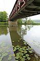 Pont de La Chapelle-aux-Choux R02.jpg
