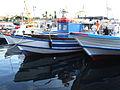 Porto Ulisse-Ognina-Catania-Sicilia-Italy - Creative Commons by gnuckx (3671004680).jpg