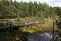 Prügelsteg im Schremser Hochmoor 02 2015-08.jpg